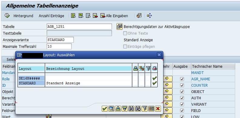 Bild 7: Anzeigevariante / Layout SE16N (Quelle SAP® ERP)