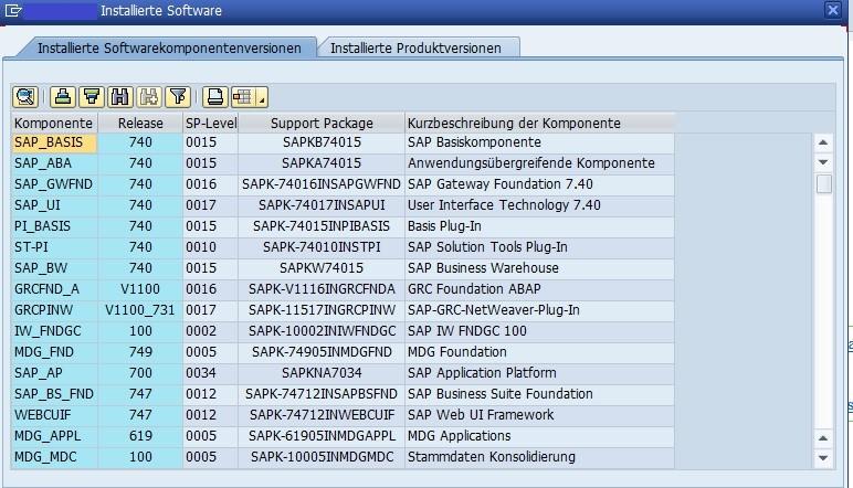 Softwarekomponenten (Quelle SAP® ERP)